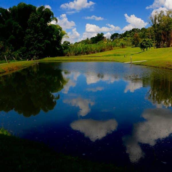 lago e tranquilidade